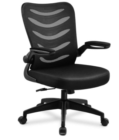 Best Office Chair for Back Pain under 100
